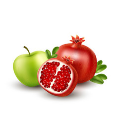 realistic pomegranate or garnet on the white vector image