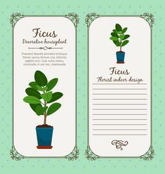 Vintage label with decorative ficus plant vector