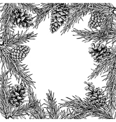 Fir tree and pine cone hand drawn square vector