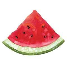 Slice of watermelon vector