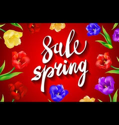 Spring sale amazing offers message on a red vector
