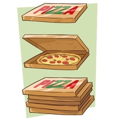 Set of cartoon cool pizza and box vector image