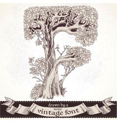 Fable forest hand drawn by a vintage font - f vector