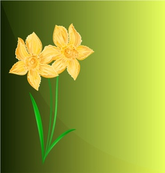 Daffodil spring flower green background vector