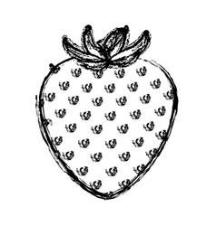 Monochrome blurred silhouette of strawberry fruit vector