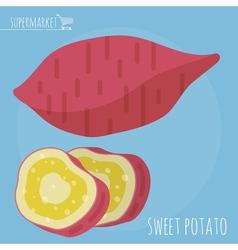 Sweet potato icon vector image vector image