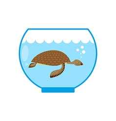 Sea turtle in an aquarium Water animal Pet in vector image