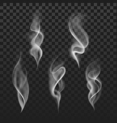 Abstract transparent smoke hot white steam vector