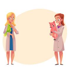 Female veterinarians vets in medical coats vector