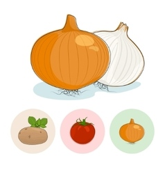 Icons oniontomatoes potato vector