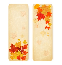 Abstract autumn banners with color leaves vector