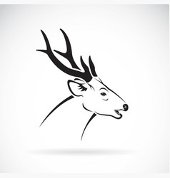 deer head on a white background wild animals vector image