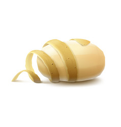 New yellow raw peeled potato with twisted peel vector