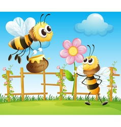 Two big bees in the garden vector image vector image