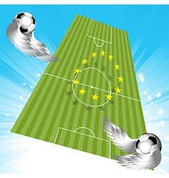 Flying football soccer pitch and balls vector