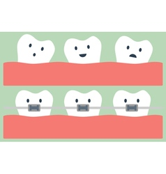 teeth orthodontics vector image