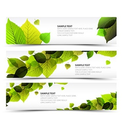 Fresh spring horizontal banners vector