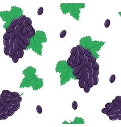 Seamless Pattern with Black Grapes on White vector image
