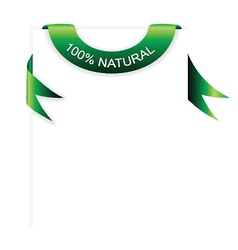 Green banner with paper vector