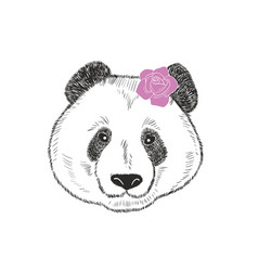 cute and romantic panda girl with pink rose behind vector image vector image