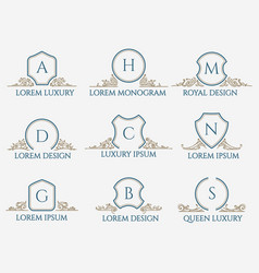 Decorative ornament text signs vector