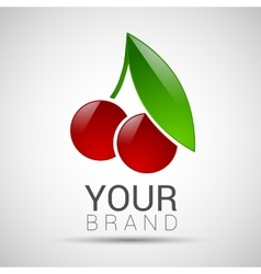 Cherry fruit sphere with green leaf logo volume vector