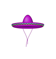 sombrero hat in purple design vector image