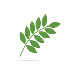 Twig with leaves green vector