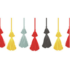 Hanging decorative tassels set with ropes vector