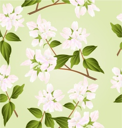 Seamless texture branches decorative shrub with wh vector image vector image