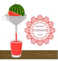 the theme watermelon vector image