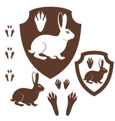 Hare Paw Print vector image
