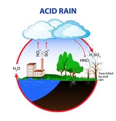Acid rain vector