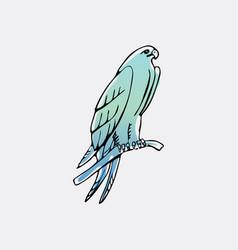 hand-drawn graphics bird predator bird of prey vector image