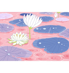 pond with lotus flowers vector image vector image