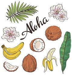 Set of aloha objects - coconut banana flowers and vector