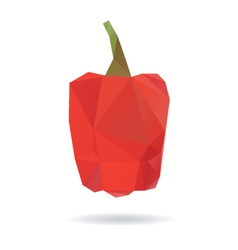 Red pepper abstract isolated on a white background vector