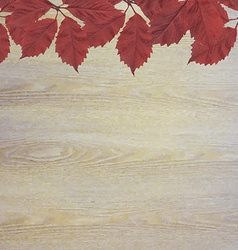 Wooden background with red leaves vector