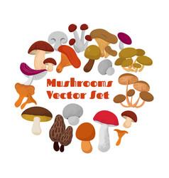 Delicacies fresh edible mushrooms set vector