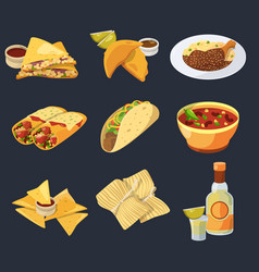 Different mexican foods in cartoon style vector