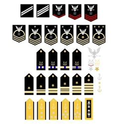 Insignia of the us navy vector