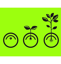 Germinate seeds vector