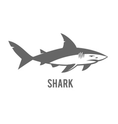 Monochrome of stylized shark isolated vector image