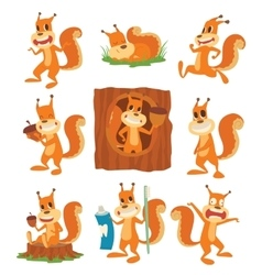 Squirrel set vector image