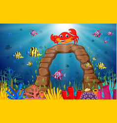 tropical crab with beautiful underwater world vector image vector image