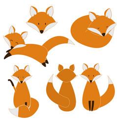 Cute fox set vector