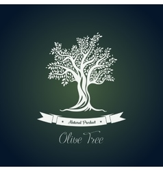 Fruit food plant or olive oil tree logo vector image vector image