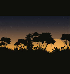 Landscape jungle rain forest silhouettes vector