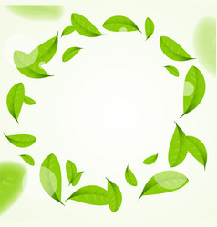 realistic green leaves circle frame background vector image vector image