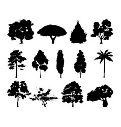 monochrome of different trees vector image